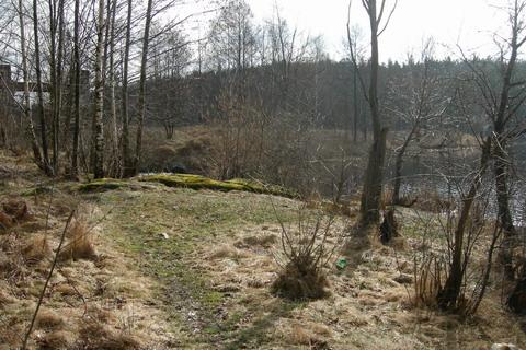 Плотина. Вид из леса.