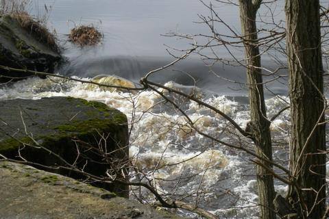 Вода перед плотиной.