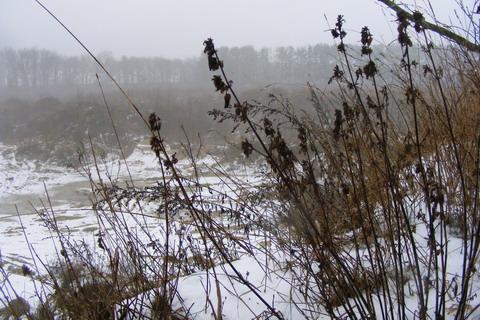 <b>Охота возле села Наливайковка.</b>