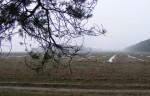 Поле возле села Наливайковка.
