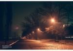 Таганрог. Пушкинская набережная ночью.