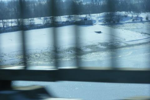 Гибель рыбы на Киевском водохранилище. Дамба ниже ГЭС.