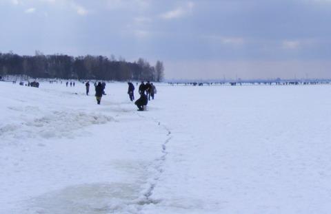 Гибель рыбы на Киевском водохранилище. Борозда вдоль дамбы.