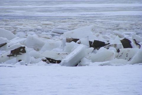 Гибель рыбы на Киевском водохранилище. Глыбы льда, отбитые рыбаками.
