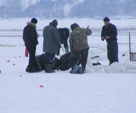 рыбаки ломают лед на киевском водохранилище и достают мертвую рыбу