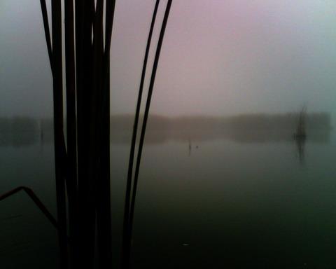 Охота в Черкасской области. Утро на озере.