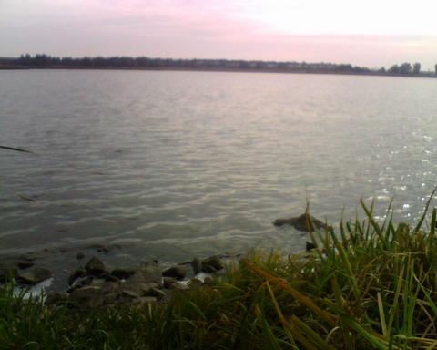 Охота в Черкасской области. Озеро.