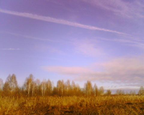 Осенние тона.