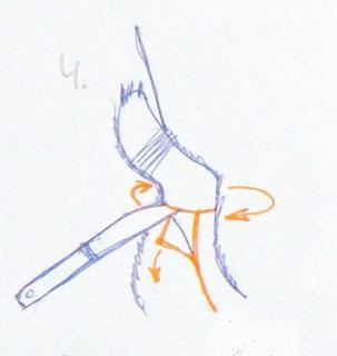 Снятие шкуры лисы. Отделение шкуры от задних лап.