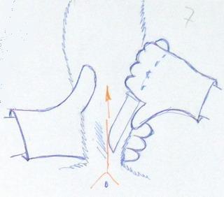 Снятие шкуры лисы. Положение ножа при надрезе хвоста.