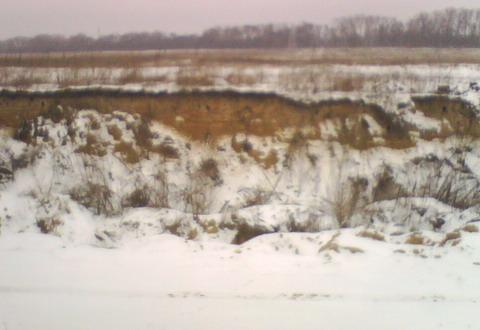 Стена песчаного карьерчика.