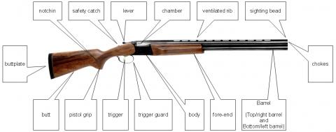 Названия частей гладкоствольного оружия по-английски.