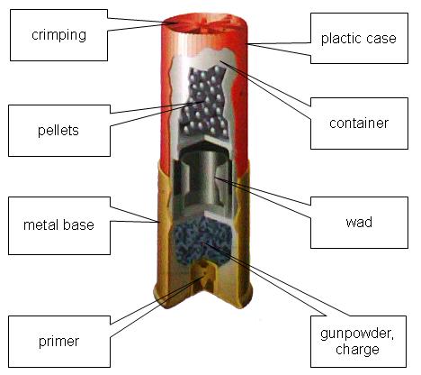 Названия частей дробового патрона по-английски.