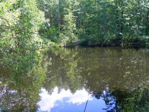 Озеро, вид от середины.