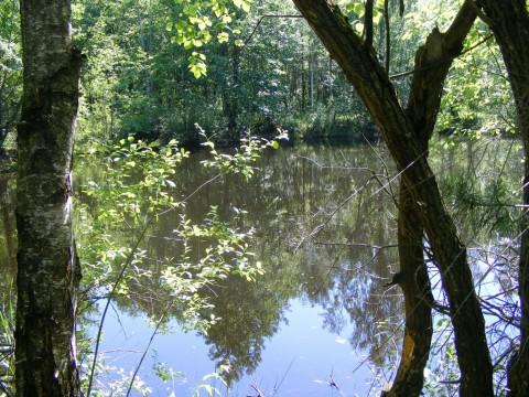 Озеро, вид с противоположной стороны.