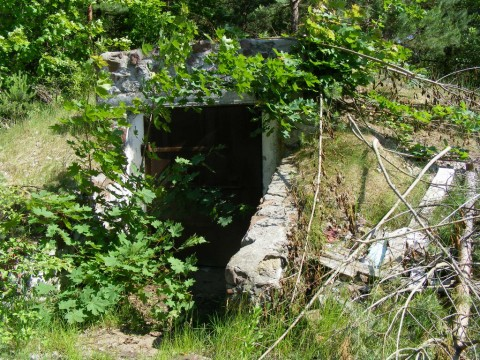 Дверь погреба продсклада (с тыльной стороны столовой).
