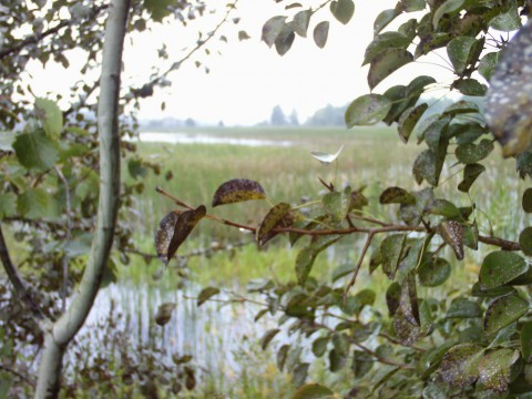 Крымок. Вид на первое озеро.