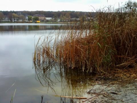 Круглик, Нижнее озеро. Дальний берег.