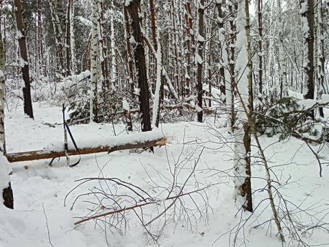 Место привала среди снега.
