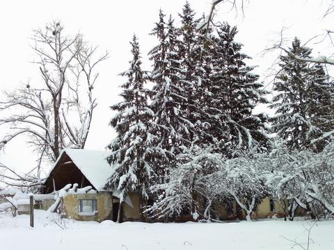 <b>Выход в снег для души. Окрестности Зуровки.</b>