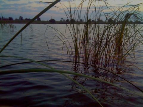 На озере в районе восточной дамбы.
