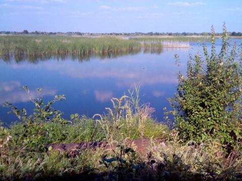 Озеро, где прошла охота.